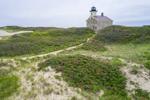 Beach Roses and North Light, Block Island, RI