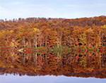 Fall Colors and Reflections at Lake Skannatati, Harriman State Park