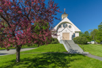 Flowering Crab Apple Tree and Saint Agnes Church in Spring, Jefferson, NH