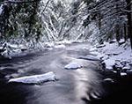 New-fallen Snow, East Branch Swift River