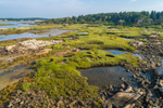 Aerial View of Salt Marshes, Tidal Pools, and Forests on Trott Island, Cape Porpoise Harbor, Kennebunkport, ME