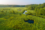 Aerial View of Priest Brook Flowing through Wetlands, Royalston, MA