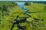 Aerial View of Wetlands at Royalston Eagle Reserve, Royalston, MA