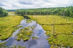 Aerial View of Marshes and Forests along West Branch Ware River, Hubbardston State Forest, Hubbardston, MA