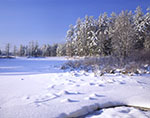 Frozen Tully Lake after Fresh Snow on Sunny, Winter Day