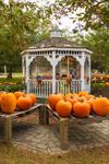 Pumpkin Stand at Bourne United Methodist Church, Cape Cod, Bourne, MA