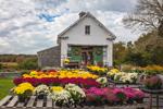 Tobey Farm Stand and 1802 Barn in Fall, Cape Cod's Oldest Family Farm, Cape Cod, Dennis, MA