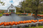 Tobey Farm Stand and 1802 Barn in Fall, Cape Cod's Oldest Family Farm, Cape Cod, Dennis, MA
