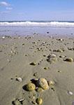 South Shore Beach, Rhode Island Sound
