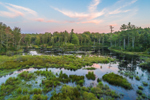 Wetlands along Falls Brook at Sunset, Richmond, NH