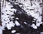 Negro Brook after Fresh Snowfall, Townshend State Forest