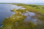 Salt Marsh along Shore of Richmond Pond with Buzzards Bay in Distance, Westport, MA