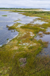 Salt Marsh along Shore of Richmond Pond with Buzzards Bay in Distance, Westport, MA