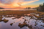 Sunset over Saltmarsh at Lopaus Point and Mitchell Cove, Mount Desert Island, Tremont, ME