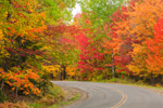 Colorful Fall Foliage along Katahdin Woods and Waters Scenic Byway, Penobscot County, T5R8 WELS, ME