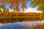 Brilliant Fall Foliage in Early Morning Light with Reflections along East Branch Penobscot River, Katahdin Woods and Waters Scenic Byway, Medway, ME