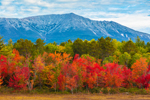 Mount Katahdin and Brilliant Foliage along Edge of Compass Pond in Fall, View from the Golden Road, Piscataquis County, T2R9 WELS, ME