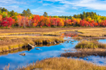 Brilliant Foliage Along Compass Pond Wetlands in Fall, View from the Golden Road, Piscataquis County, T2R9 WELS, ME