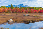 Compass Pond, Wetlands, and Mount Katahdin in Fall, View from the Golden Road, Piscataquis County, T2R9 WELS, ME