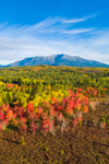 Aerial View of Wetlands at Edge of Compass Pond and Mount Katahdin in Fall, View from the Golden Road, Piscataquis County, T2R9 WELS, ME