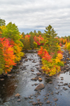 Aerial View of East Branch Pleasant River in Fall, Ebeemee, ME