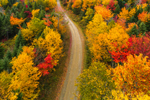 Aerial View of Unpaved Country Road through Forest with Brilliant Fall Foliage, off Moosehead Lake Scenic Byway, Lily Bay Township, ME