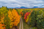 Aerial View of Unpaved Country Road through Forest with Brilliant Fall Foliage and Mountains in Distance, off Moosehead Lake Scenic Byway, Lily Bay Township, ME