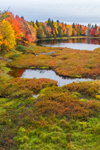 Small Pond, Wetlands, and Forests in Fall, Moosehead Lake Region, Misery Township, ME