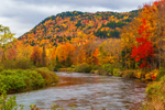 Magalloway River and Brilliant Fall Foliage on Mountainside, Rangeley Lakes Region, Village of Wilsons Mills, Lincoln Plantation, ME
