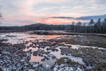 Lawrence Brook at Sunset in Winter, Royalston, MA