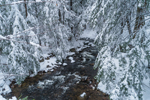 Bailey Brook in Winter, Stoddard, NH