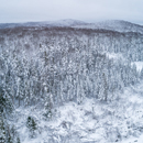 Aerial View of Wetlands, Forests, and Mountains after Snowfall, Green Mountain National Forest, Winhall, VT