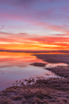 Colorful Sunrise over Marshes at Boardwalk Beach, Cape Cod, Sandwich, MA