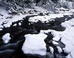 Fresh Snow at Willard Brook, Willard Brook State Forest