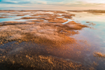 Early Morning Light Shines on Marshes at Boardwalk Beach, Cape Cod, Sandwich, MA