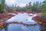 Beaver Dam on Whites Mill Pond in Winter, Winchendon, MA