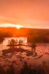 Sunrise at Harvard Pond, Petersham, MA