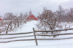 Apple Orchard and Split-rail Fence in Winter with Red Barn in Background, Hollis, NH
