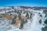 Spruce Trees and Farmlands in Winter, Salem, NY