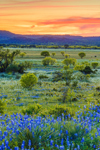 Sunset over Texas Hill Country Landscape, Willow City Loop, near Fredericksburg, TX