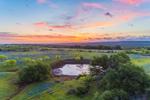 Sunrise over Field of Texas Bluebonnets and Small Pond, near Mason, TX