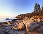 Early Morning Light on Rocky Shoreline, View from Ocean Drive to Otter Cliffs