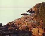 Morning Light on Rocks along Shoreline, View from Ocean Drive to Otter Cliffs