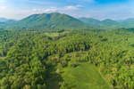 Fields and Forests with Blue Ridge Mountains in Background, View from Goode, VA
