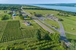 Glenora Wine Cellars on Seneca Lake, Finger Lakes Region, Village of Dundee, NY