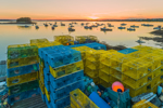 Close Up of Yellow and Blue Lobster Traps on Wharf as Sun Sets over Lobster Boats in Barney Cove, Beals Island, Town of Beals, ME