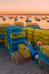 Yellow and Blue Lobster Traps on Wharf as Sun Sets over Lobster Boats in Barney Cove, Beals Island, Town of Beals, ME