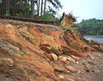 Red Clay on Shoreline of Lake Sidney Lanier near Brown's Bridge
