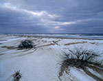 Winter Storm at Coast Guard Beach