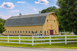 Big Yellow Gambrel Barn with White Picket Fence at Monarch Farm, Claremont, NH